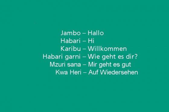 Erste afrikanische Sprache im Microsoft Translator