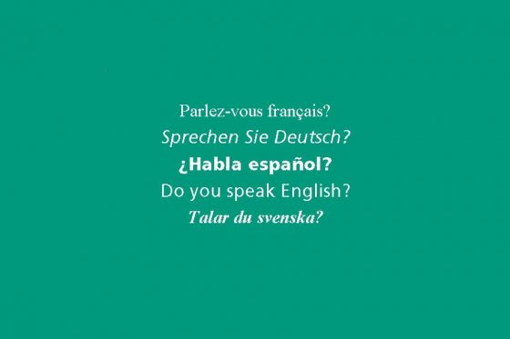 Kocarek Gmbh Fachuebersetzungen Fremdsprachen in Europas Schulen