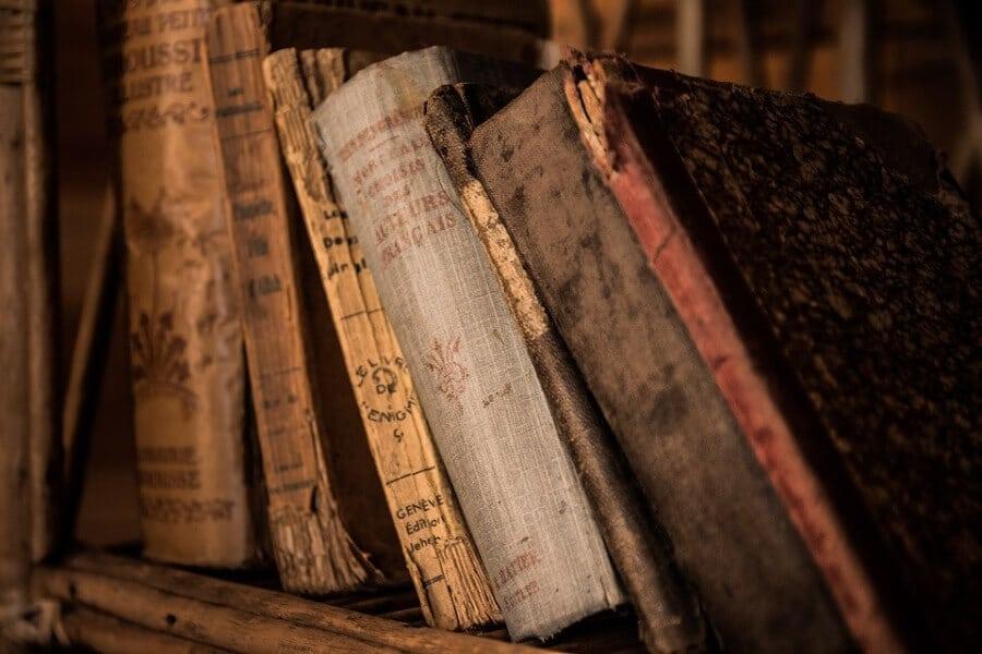 Kocarek Gmbh Fachuebersetzungen Reading the World - die ganze Welt lesen