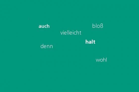 Kocarek Gmbh Fachuebersetzungen Teil III - Die deutsche Sprache - schön schwierig